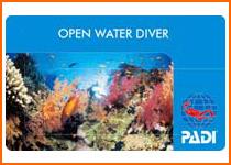 オープン・ウォーター・ダイバー(2日)